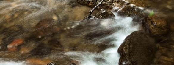 川の流れ_02